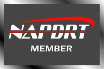 NAPDRT-Member NAPDRT Member 2020 | Mobile Dent Medic Paintless Dent Repair
